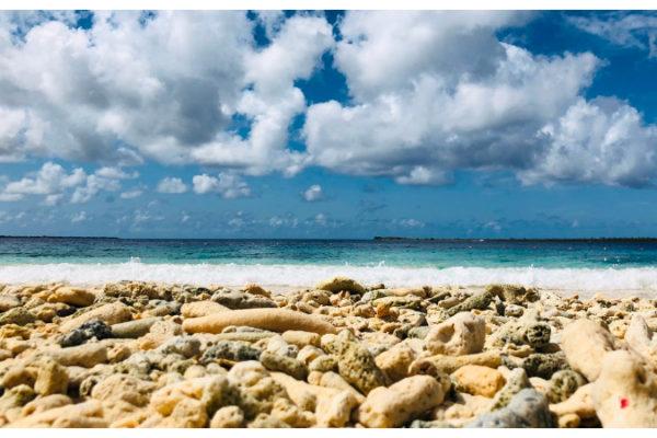 Harbour_beachclub_Bonaire